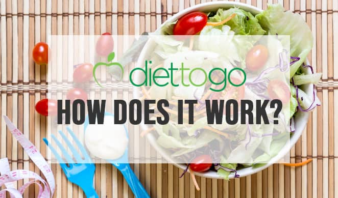 How does diet to go work