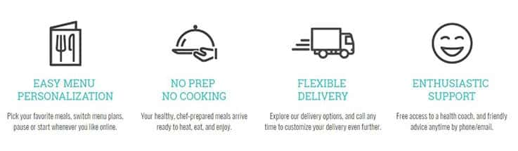 food delivery systems Diet to go