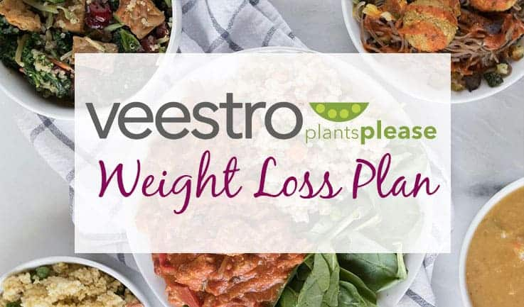 meal plan for losing weight from Veestro
