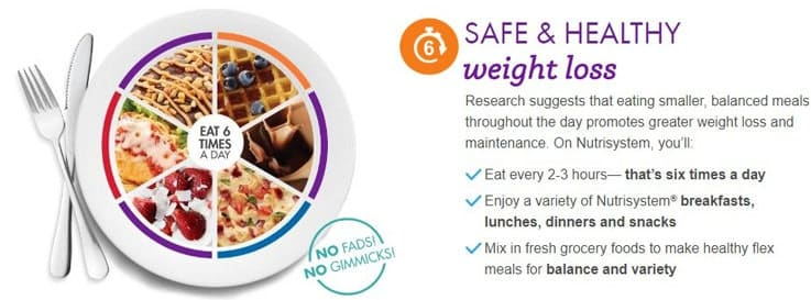Nutrisystem-safe & health ingredients