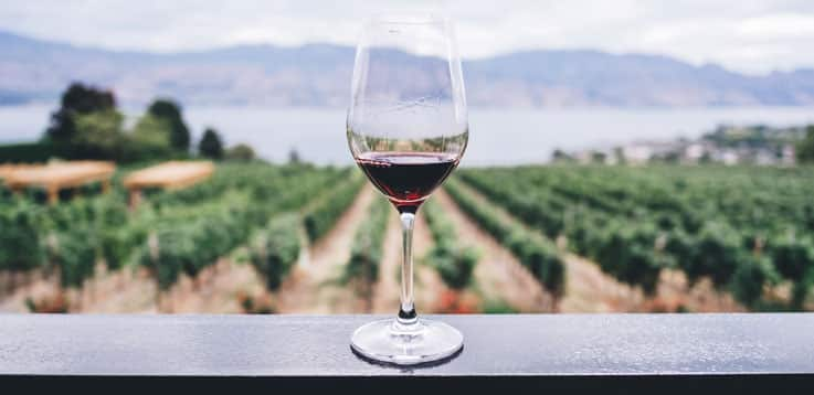 image of glass of wine and beautiful view
