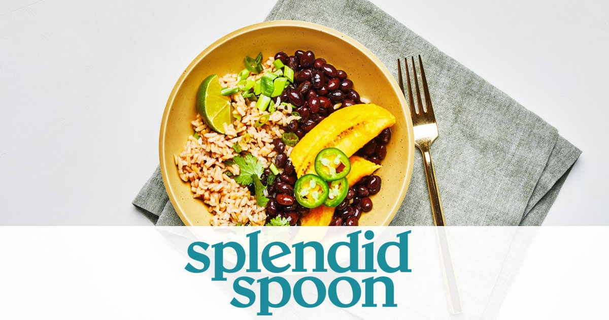 Splendid spoon service review image